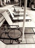 Loungers del Poolside, monocromatici Immagine Stock Libera da Diritti