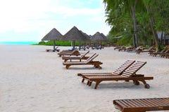 Loungers di Sun sulla spiaggia immagine stock