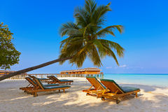 Loungers on Maldives beach Stock Image