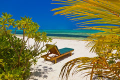 Loungers on Maldives beach Stock Photo