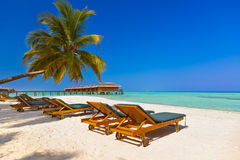 Loungers on Maldives beach. Nature vacation background stock photography