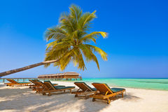 Loungers on Maldives beach Stock Photos