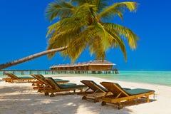 Loungers on Maldives beach Royalty Free Stock Photo