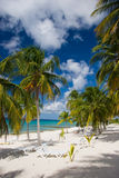 loungers palm beach biały piasek Fotografia Royalty Free