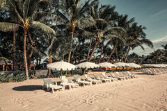 Loungers with parasols on the beach. Stock Photos
