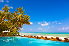 Loungers and pool on Maldives beach. Nature vacation background Royalty Free Stock Photo