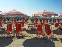 Loungers and sun umbrellas  in the  beach near Pisa Royalty Free Stock Image