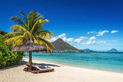 Loungers and umbrella on tropical beach in Mauritius. Island, Indian Ocean Royalty Free Stock Photo