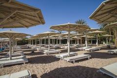 Loungers vazios do sol na praia Imagens de Stock