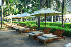 Lounges and palm Royalty Free Stock Image