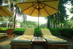 Lounges under palm trees Royalty Free Stock Photography