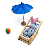 lounging的兔宝宝 图库摄影