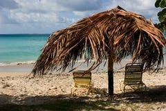 lounging的热带 库存图片