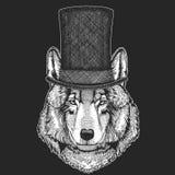 Loup, chien Chapeau supérieur, cylindre Animal de hippie, monsieur Coiffe classique Copie pour des enfants T-shirt, habillement d Illustration de Vecteur