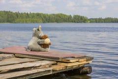 Loup de jouets et ours de nounours se reposant sur la jetée près du lac Image stock