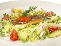 Loup de mer - filet de poissons avec de la salade images libres de droits