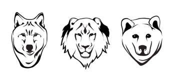 Loup, lion et ours gris Images libres de droits