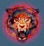 Loup sauvage illustration libre de droits