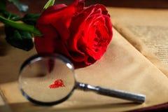 Loupe et rose de rouge sur un livre Photo libre de droits