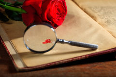 Loupe et rose de rouge sur un livre Photo stock