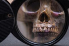 Loupe, magnifying glass and realistic rock carved skull on natural stone royalty free stock photography