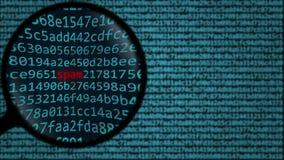 Loupe ontdekt woordspam op het computerscherm Veiligheid het verwante onderzoek conceptuele 3D teruggeven Royalty-vrije Stock Foto