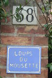 38 loups du mousette Images stock