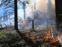 Lourd brûlant Image stock