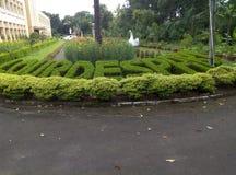 Lourdespark groene tuin Stock Afbeeldingen