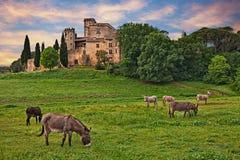 Lourmarin, Провансаль, Франция: ландшафт на зоре countrysid стоковое фото