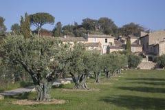 Lourmarin Village and Olive Trees, Provence. France, Europe Royalty Free Stock Photo