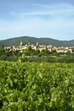 Lourmarin vineyards south of france Stock Photos