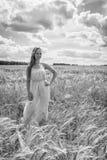 Louro bonito em um campo de trigo Fotografia de Stock Royalty Free
