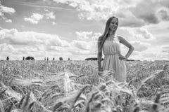 Louro bonito em um campo de trigo Imagens de Stock Royalty Free