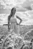 Louro bonito em um campo de trigo Foto de Stock Royalty Free