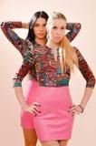 louro bonito & morena de 2 jovens mulheres das irmãs sérias que vestem os mesmos vestidos brilhantes & que olham a câmera no back Foto de Stock