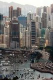 Louro da calçada, Hong Kong. fotografia de stock