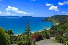 Louro das ilhas Imagem de Stock Royalty Free
