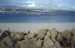 Louro de Brittany Imagem de Stock