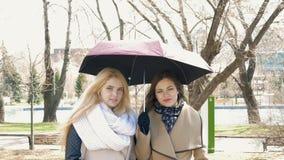 Louro de duas amigas e morena bonitos - estar de fala sob um guarda-chuva Dia ensolarado, os sopros do vento filme