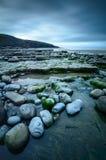 Louro de Dunraven Fotografia de Stock Royalty Free