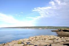 Louro de Fundy Fotografia de Stock Royalty Free