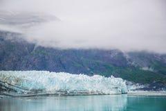 Louro de geleira Alaska Fotos de Stock