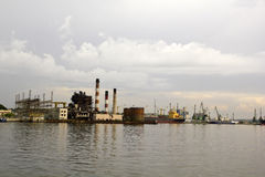 Louro de Havana, Cuba Fotografia de Stock