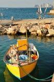 Louro de Jaffa. Fotos de Stock Royalty Free