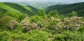 Louro de montanha, Ridge Mountains azul e Shenandoah Valley - 4 fotografia de stock