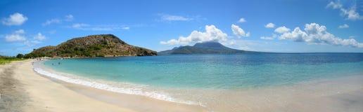Louro do Cockleshell - oceano/mar/praia /tropic Imagens de Stock Royalty Free