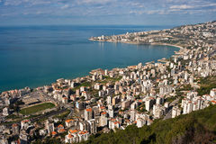 Louro do jounieh Foto de Stock