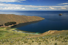 Louro do lago Titicaca como visto de Isla del Solenóide Imagens de Stock