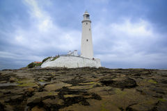 Louro do whitley do farol dos marys do St Foto de Stock Royalty Free